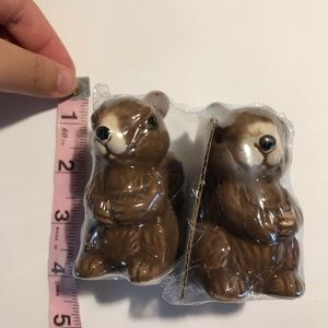 NWT squirrel salt shakers great for fall adorable